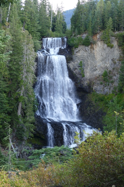 Alexander Falls