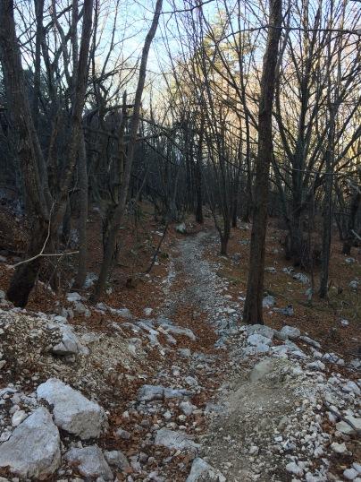 Coast Trail - Der Einstieg