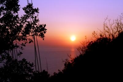 Der Sonnenuntergang (untermalt von hektischem Grunzen im Unterholz)