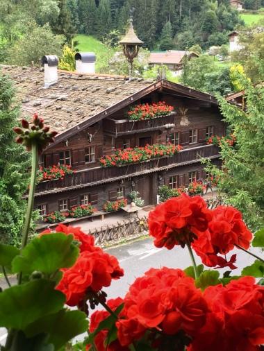 ...und rechts vom Balkon des Zimmers im Fuchswirt waren mit Abstand das Schönste und Trockenste des Tages.