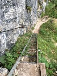 ...über unzählige Leitern.