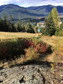 Eine der zahlreichen Felsabfahrten auf Whistler Downhill.