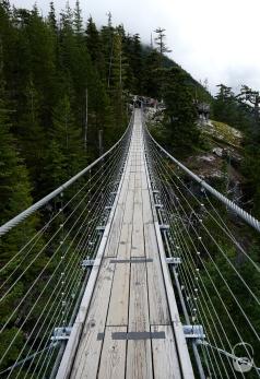 Zurück an der Bergstation noch schnell über die Hängebrücke...