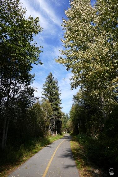 Der leider betonierte aber unverkennbare Valley Trail.