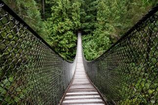 Die Lynn Canyon Suspension Bridge.