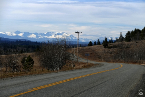 Der Ausblick auf die Coast Mountains verschlägt einem konstant die Sprache.