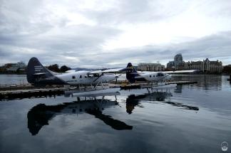 Wasserflugzeuge - ohne gehts nicht.