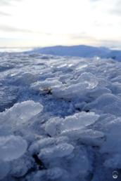 Ein Blick auf den Boden zeigt deutlich die vorherrschende Temperatur an.