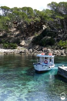 Kaum wieder im Hafen, tuckert auch schon das Boot in die Lagune.