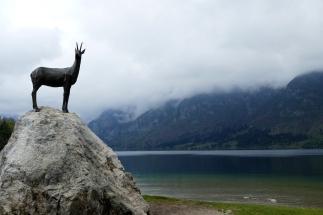 Ankunft Bohinj See.