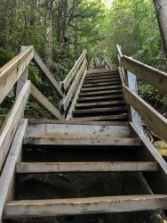 Bei diesen - den ersten - Treppen lacht man noch...