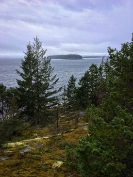 Mit Savary Island vor Augen, war ich mir sicher, dass das der richtige Weg war bzw. wäre.